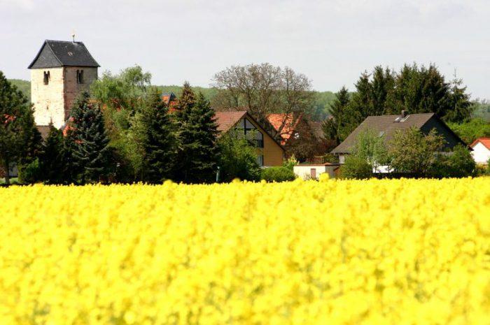 Blick auf Dorstadt © www.dorstadt.de